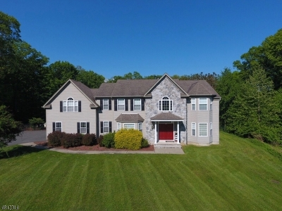 Byram Twp. Single Family Home For Sale: 8 Windsor Ln