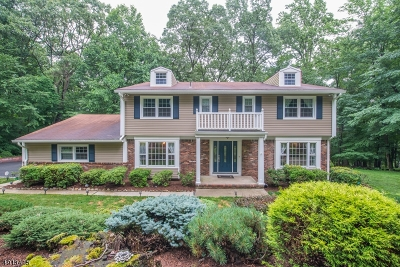 Parsippany-Troy Hills Twp. Single Family Home For Sale: 9 Tracy Ln
