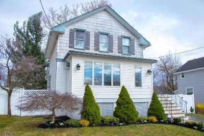 Edison Twp. Single Family Home For Sale: 38 Maple Ave