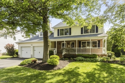 Hillsborough Twp. Single Family Home For Sale: 4 Fine Rd