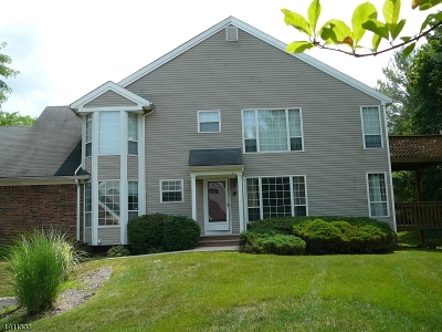 Hunterdon County Condo/Townhouse For Sale: 5 Clover Ct