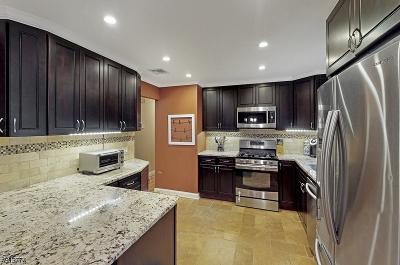 Byram Twp. Single Family Home For Sale: 13 Lockwood Ave