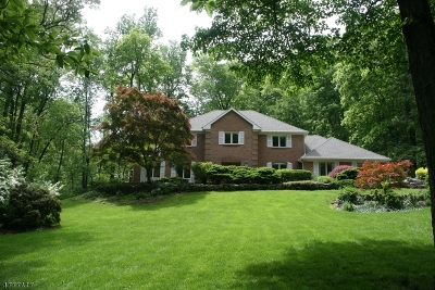 Bernardsville Boro NJ Single Family Home For Sale: $789,000