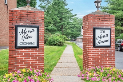Summit City NJ Condo/Townhouse For Sale: $308,000