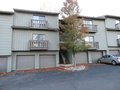 Hunterdon County Condo/Townhouse For Sale: 105 Spruce Hills Dr #105