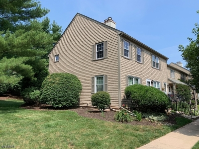 Raritan Twp. Condo/Townhouse For Sale: 88 Franklin Ct