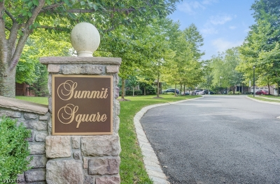 Summit City NJ Condo/Townhouse For Sale: $859,000