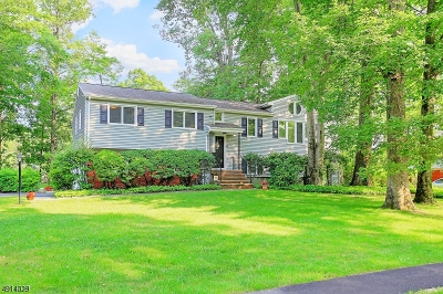 Morris Twp. Single Family Home For Sale: 1 Hadley Way