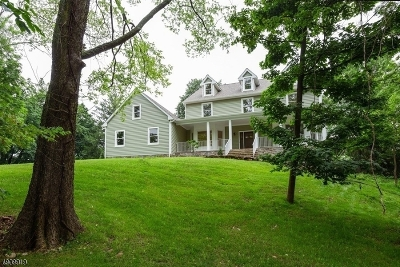 Clinton Town Single Family Home For Sale: 2 Olsen Ln