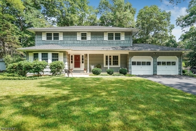 Bernards Twp. Single Family Home For Sale: 27 Voorhees Dr