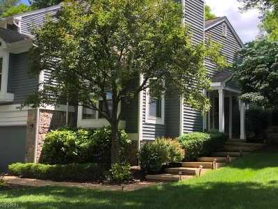 Bedminster Twp. Condo/Townhouse For Sale: 2 Lockhaven Ct