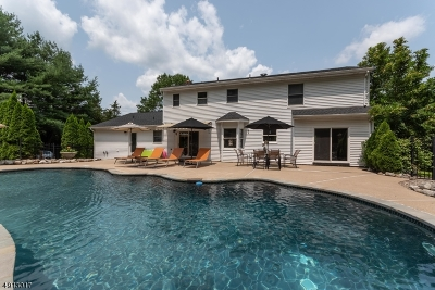 Holland Twp. Single Family Home For Sale: 219 Church Rd