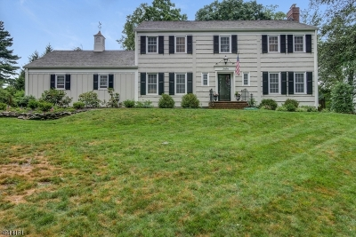 Morris Twp., Morristown Town Single Family Home For Sale: 12 Old Glen Rd