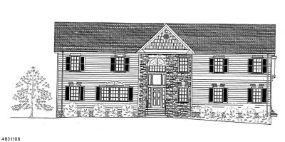 Bridgewater Twp. NJ Single Family Home For Sale: $625,000