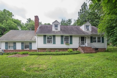 Boonton Twp. Single Family Home For Sale: 146 Powerville Rd