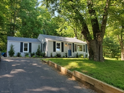 Lebanon Twp. Single Family Home For Sale: 300 Meiers Ln