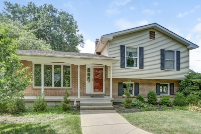Madison Boro Single Family Home For Sale: 19 Rachael Ave