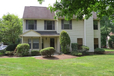 Edison Twp. Condo/Townhouse For Sale: 908 Timber Oaks Rd