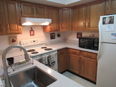 Bedminster Twp. NJ Single Family Home For Sale: $199,900