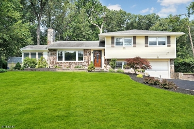 Warren Twp. Single Family Home For Sale: 47 Morning Glory Rd