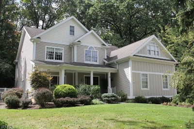 Morristown Town, Morris Twp. Single Family Home For Sale: 66 Spring Brook Rd