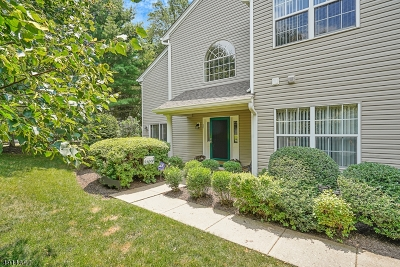 Bedminster Twp. NJ Condo/Townhouse For Sale: $499,900