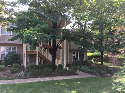 Clinton Twp. Condo/Townhouse For Sale: 19 Westchester Ter