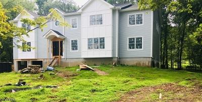 Livingston Twp. Single Family Home For Sale: 19 Locust Pl