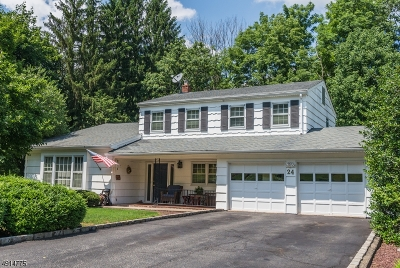 Parsippany-Troy Hills Twp. Single Family Home For Sale: 24 Pondview Rd