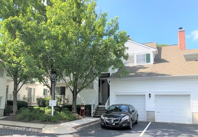 Bernards Twp. NJ Condo/Townhouse For Sale: $259,000