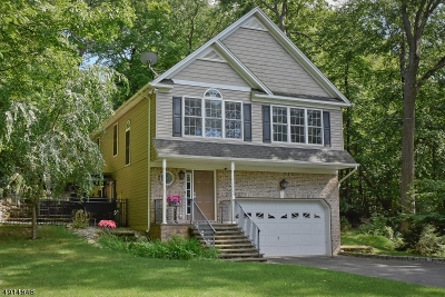 Byram Twp. Single Family Home For Sale: 28 Old Stagecoach Rd