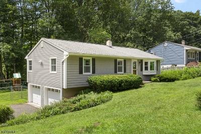 Stanhope Boro Single Family Home For Sale: 15 Lloyd Ave