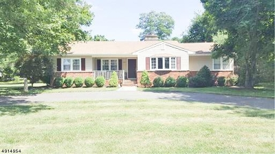 Franklin Twp. Single Family Home For Sale: 377 Girard Ave
