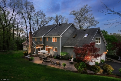 Bernardsville Boro NJ Single Family Home For Sale: $1,099,000