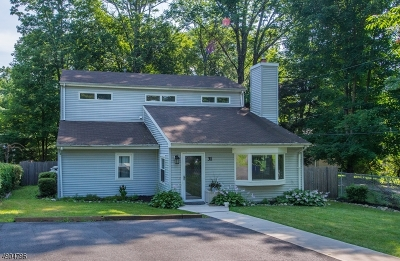 Boonton Twp. Single Family Home For Sale: 31 River Rd