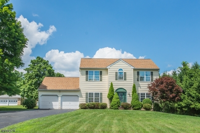 Mount Olive Twp. Single Family Home For Sale: 14 Ironia Rd