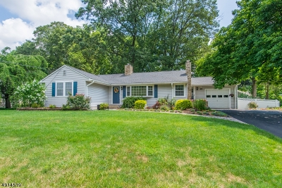 Parsippany-Troy Hills Twp. Single Family Home For Sale: 85 Red Gate Rd