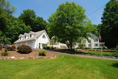 Vernon Twp. Single Family Home For Sale: 1687 Route 565