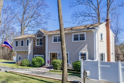 Parsippany-Troy Hills Twp. Single Family Home For Sale: 61 Intervale Rd