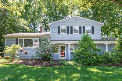 Wayne Twp. Single Family Home For Sale: 46 Braemar Dr