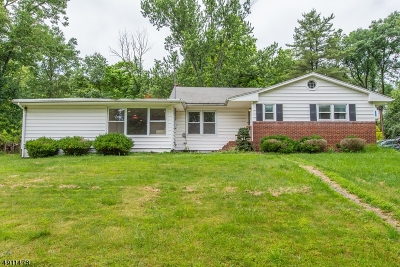Somerset County Single Family Home For Sale: 3 Tanglewood Ln