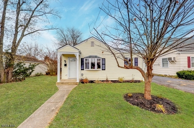 Somerville Boro Single Family Home For Sale: 75 N Adamsville Rd