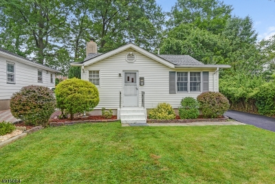 Parsippany-Troy Hills Twp. Single Family Home For Sale: 36 Longview Ave
