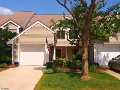 Somerset County Condo/Townhouse For Sale: 12 Stryker Court