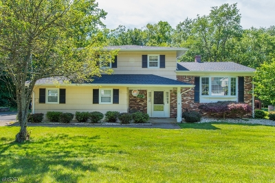 Roxbury Twp. Single Family Home For Sale: 86 Toby Dr