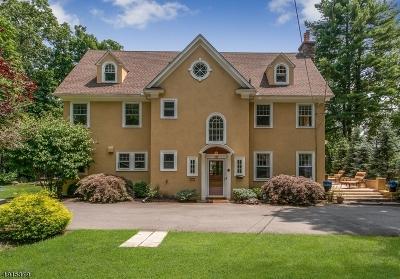 Mountain Lakes Boro Single Family Home For Sale: 070 Boulevard
