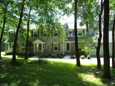 Bethlehem Twp. Single Family Home For Sale: 310 N Polktown Rd