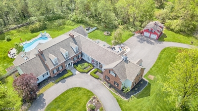 Alexandria Twp. Single Family Home For Sale: 20 Schick Rd