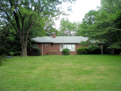 Branchburg Twp. Single Family Home For Sale: 50 Dreahook Rd