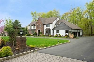 Warren Twp. Single Family Home For Sale: 25 W Deerwood Trl
